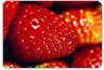 Fisetina: de acordo com estudo, substância presente no morango melhora a memória