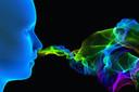 COVID-19 e perda de olfato: as células de suporte olfativas, e não os neurônios, são vulneráveis à infecção pelo novo coronavírus
