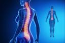 Descompressão cirúrgica dentro de 24 horas após lesão medular aguda está associada a uma melhor recuperação sensório-motora