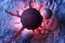 O primeiro mapa de proteínas em células tumorais aponta alvos para a terapia do câncer