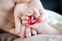 Pediatrics: ácido fólico pode reduzir o risco de tumor de Wilms e de tumores neuroectodérmicos na infância