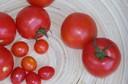 Polpa de tomate concentrada protege a pele contra os raios ultravioletas, prevenindo o câncer de pele e o fotoenvelhecimento