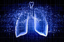 Previsão do risco de câncer de pulmão no rastreio de acompanhamento com TC de baixa radiação: um estudo de treinamento e validação de um método de deep learning
