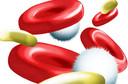 RYDAPT (Midostaurina): Anvisa aprova novo medicamento para tratar leucemia mieloide aguda